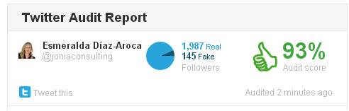 Twitter-audit-Report
