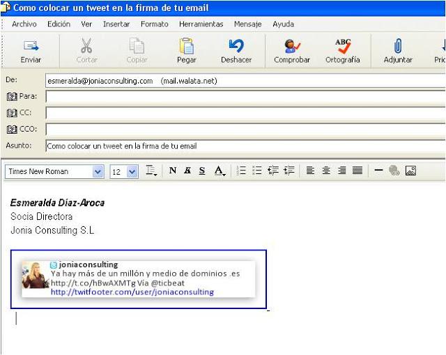 Twet-en-firma-de-email